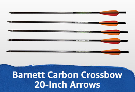 20-inch arrows