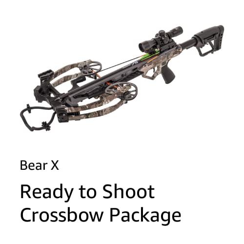 Bear X
