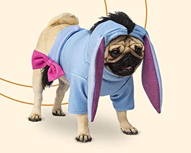 Pet costumes and treats