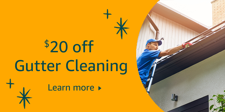 $20 off Gutter Cleaning