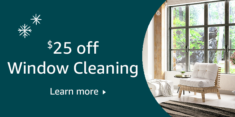$25 off window cleaning