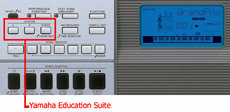 Yamaha YPG-235 Education Suite