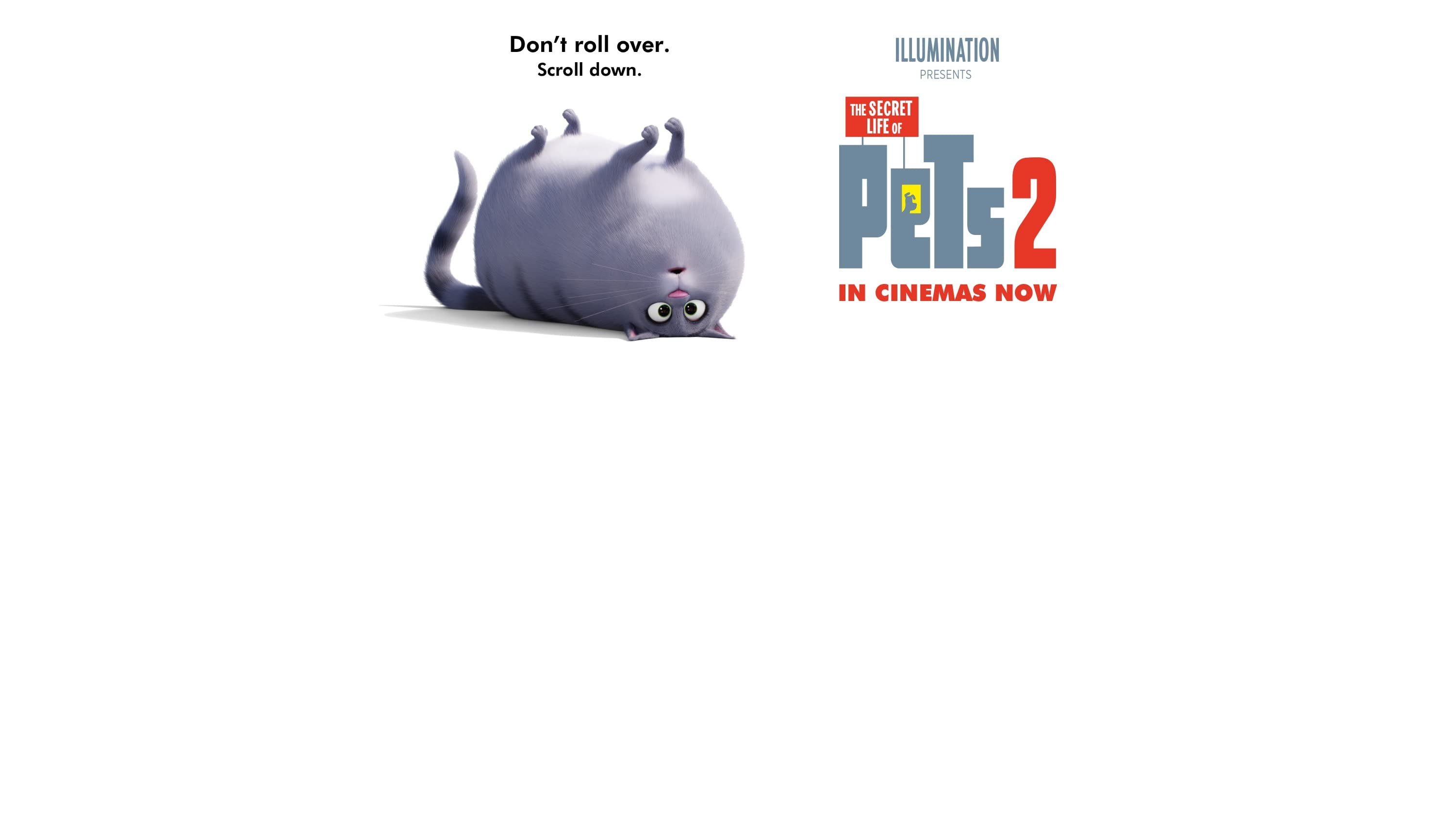 Illumination presents Secret Life of Pets 2. In cinemas May 24. Don't roll over. Scroll down