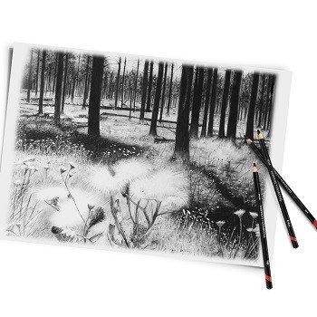 Light Derwent Charcoal Pencils for Art /& Sketching Medium or Dark