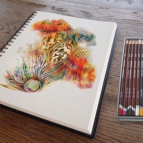 Colorful sketch