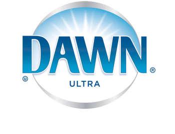 Amazon Com Dawn Dish Soap Ultra Concentrated