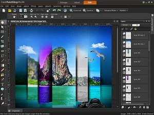 Amazon.com: PaintShop Pro X5 [Old Version]: Software