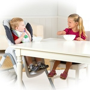 Booster High Chair With Tray That Fits Under Kitchen Table