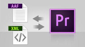 Adobe Premiere Pro CC   1 Year Subscription (Download)