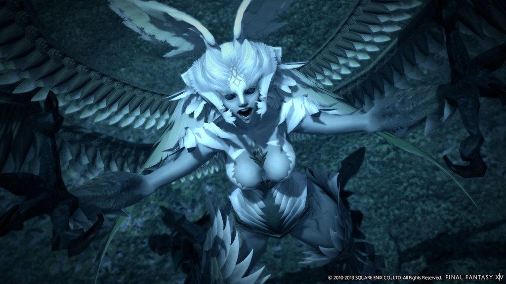 Amazon com: Final Fantasy XIV: A Realm Reborn Collector's
