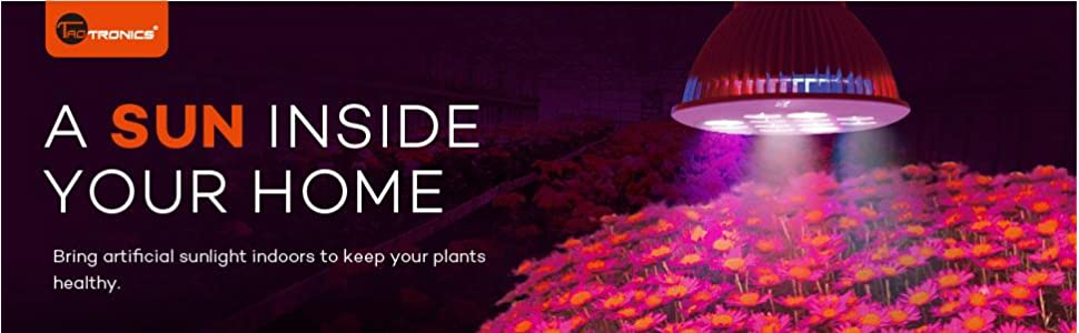 magazine grow lights light led value plant of dabs