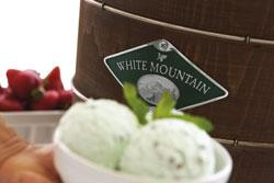 electric ice cream maker, cuisinart, ice cream, nostalgia