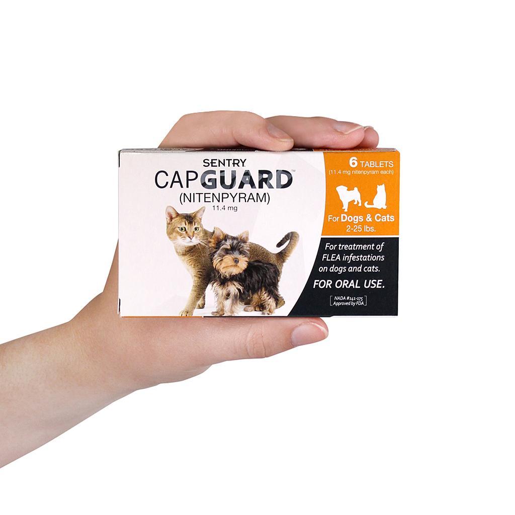 Top 10 Best Cat Flea Treatments in 2019 Reviews - AllPetTips