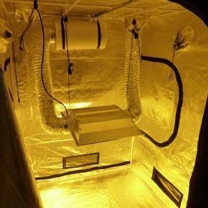 Ipower mylar hydroponic grow tent for indoor for Mylar flooring