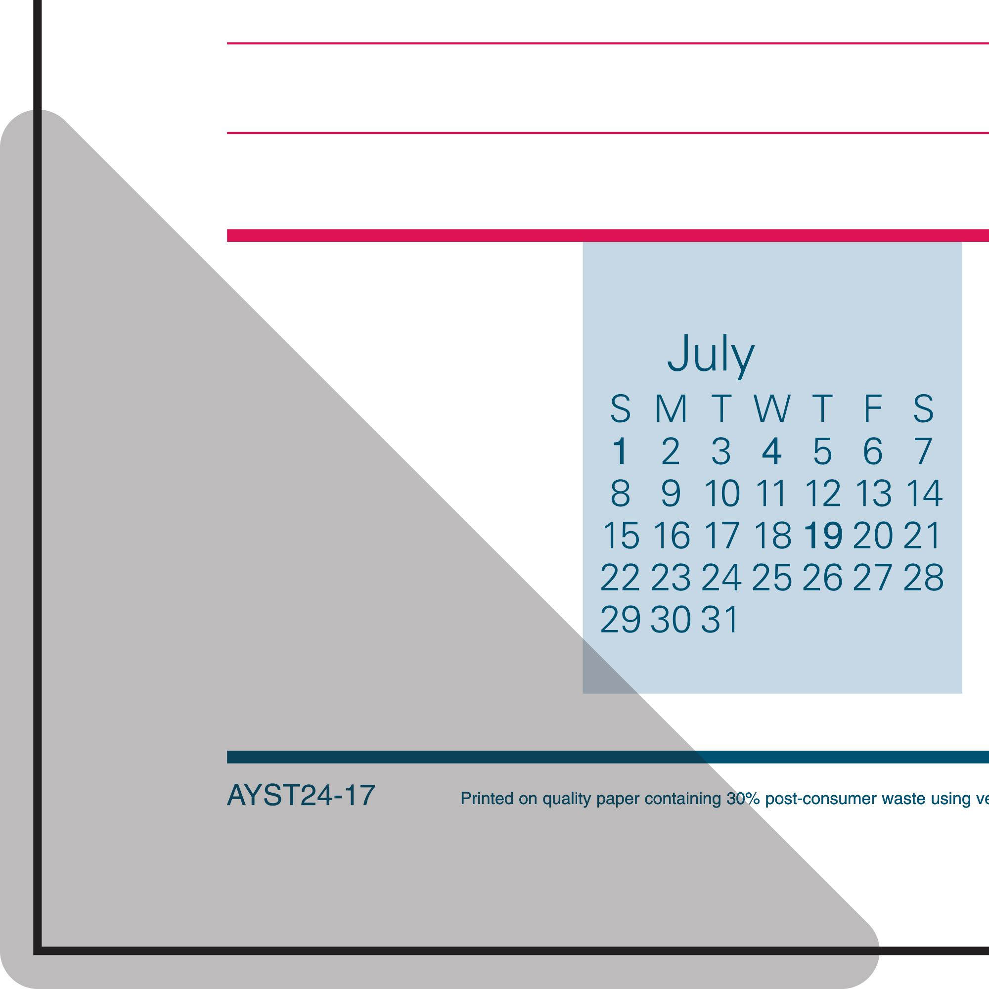Amazon Com At A Glance Monthly Desk Pad And Wall