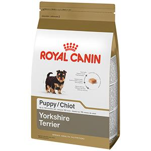 royal canin breed health nutrition yorkshire terrier puppy dry dog food 2 5 pound. Black Bedroom Furniture Sets. Home Design Ideas