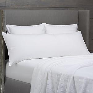 Pinzon Body Pillow with 100% Cotton Cover
