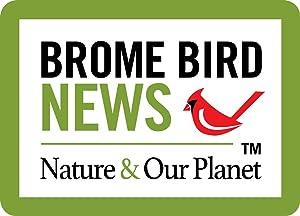birds, bird news, photo contest, ornithology