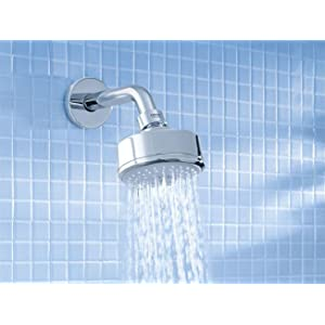 grohe new tempesta 4spray shower head