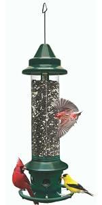 luxury item, squirrel-proof feeder