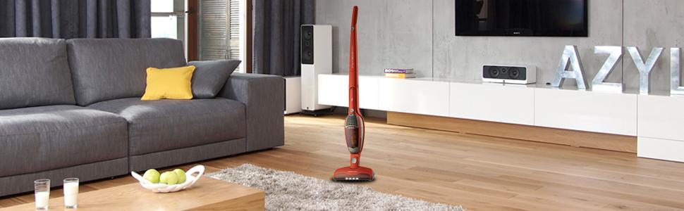Amazon Com Electrolux Ergorapido Ion 2 In 1 Stick