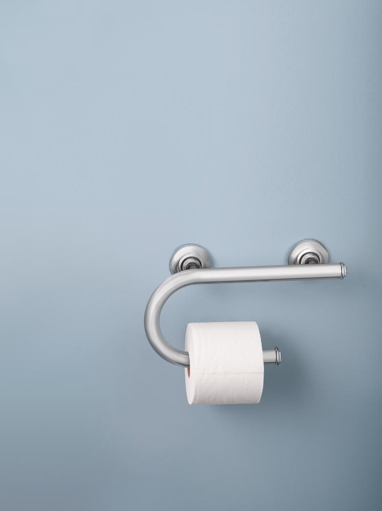 Amazon.com: Moen LR2352DCH Toilet Paper Holder with Grab Bar ...