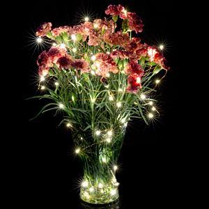 Starry lights, Leds light string, String of lights, Strings lights, Star lights,outdoor led strings,