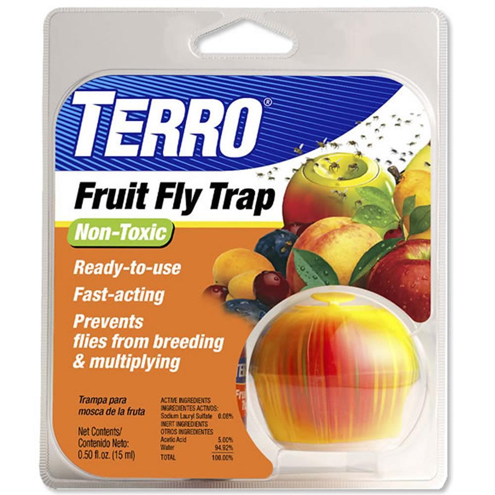 Amazon.com : TERRO Fruit Fly Trap T2500 : Home Pest