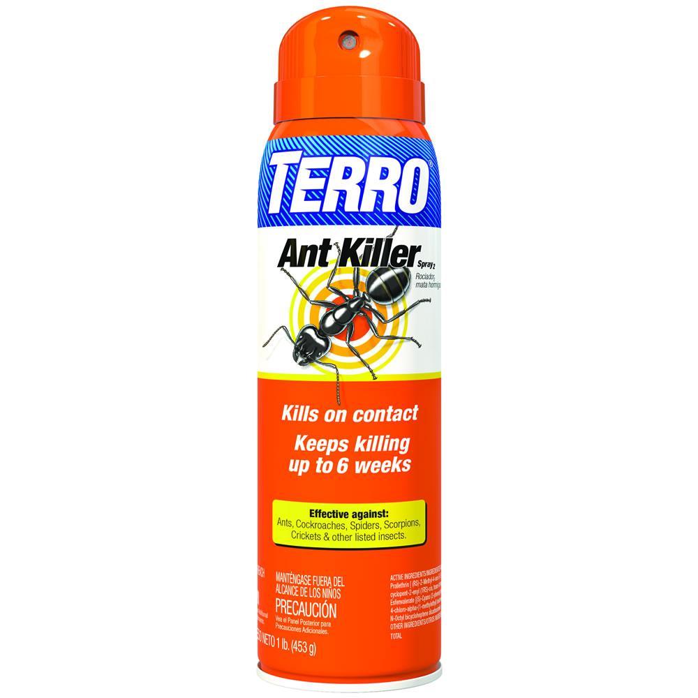 Amazon.com : TERRO T401 Ant Killer Aerosol Spray : Home