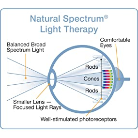 The effect of Natural Spectrum Light on the eye.