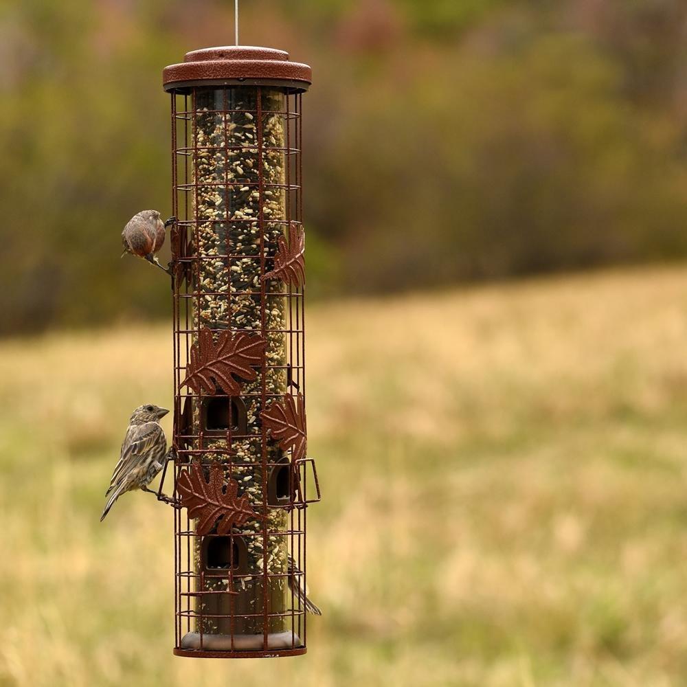 Outdoor seasons squirrel be gone iii bird feeder-9480