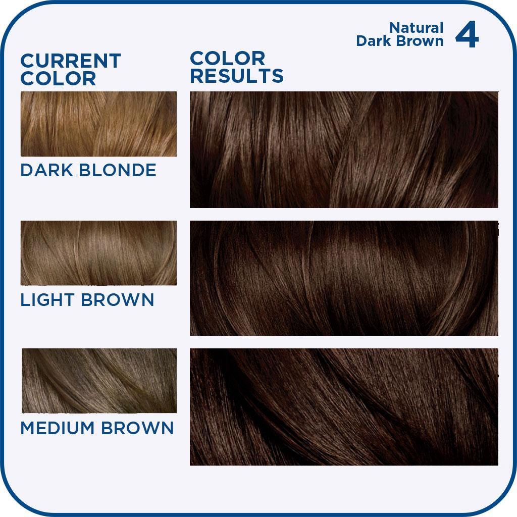 Amazon Com Clairol Nice N Easy Permanent Color 4 Dark Brown 1
