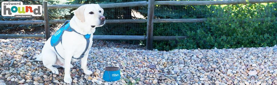 dog bowl, portable dog bowl, portable food bowl, portable water bowl