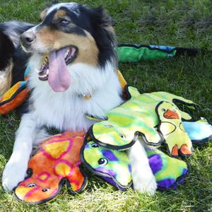 invincible dog toys