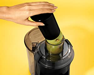 juicer hand electric vegetable inexpensive champion triturating centrifugal small best rated reviews