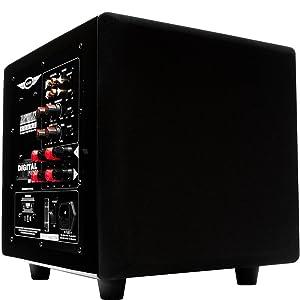earthquake sound minime p10 v2 10 inch passive. Black Bedroom Furniture Sets. Home Design Ideas