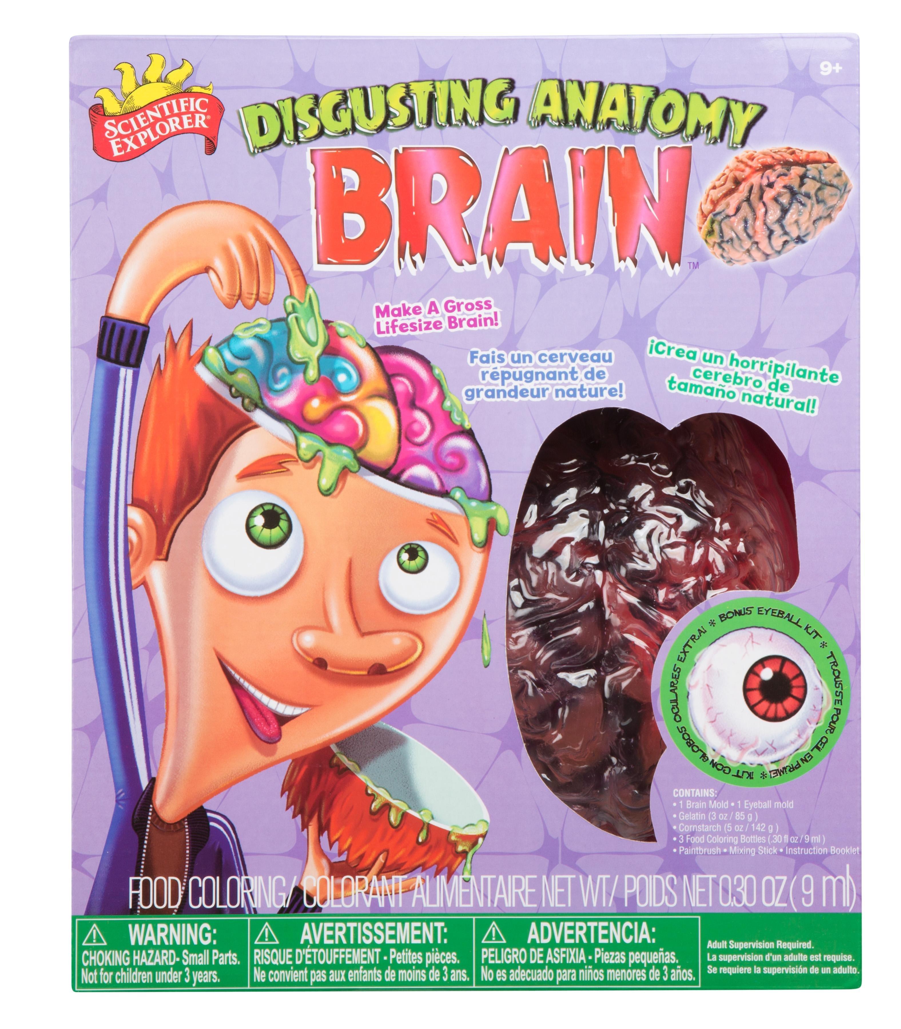 Amazon.com: Scientific Explorer Disgusting Anatomy Brain: Toys & Games
