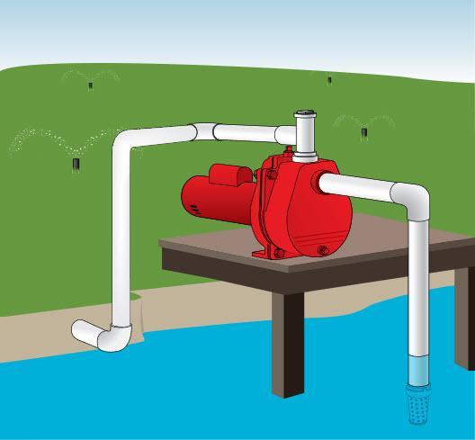 red lion rlsp-150 1-1/2-hp 50-gpm cast iron sprinkler pump ... irrigation pond diagram diagram pond yacht