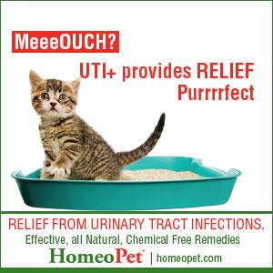 homeopet uti plus urinary tract infection for cats 15ml pet supplies. Black Bedroom Furniture Sets. Home Design Ideas
