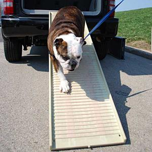 Amazon Com Petstep Original Folding Pet Ramp Khaki