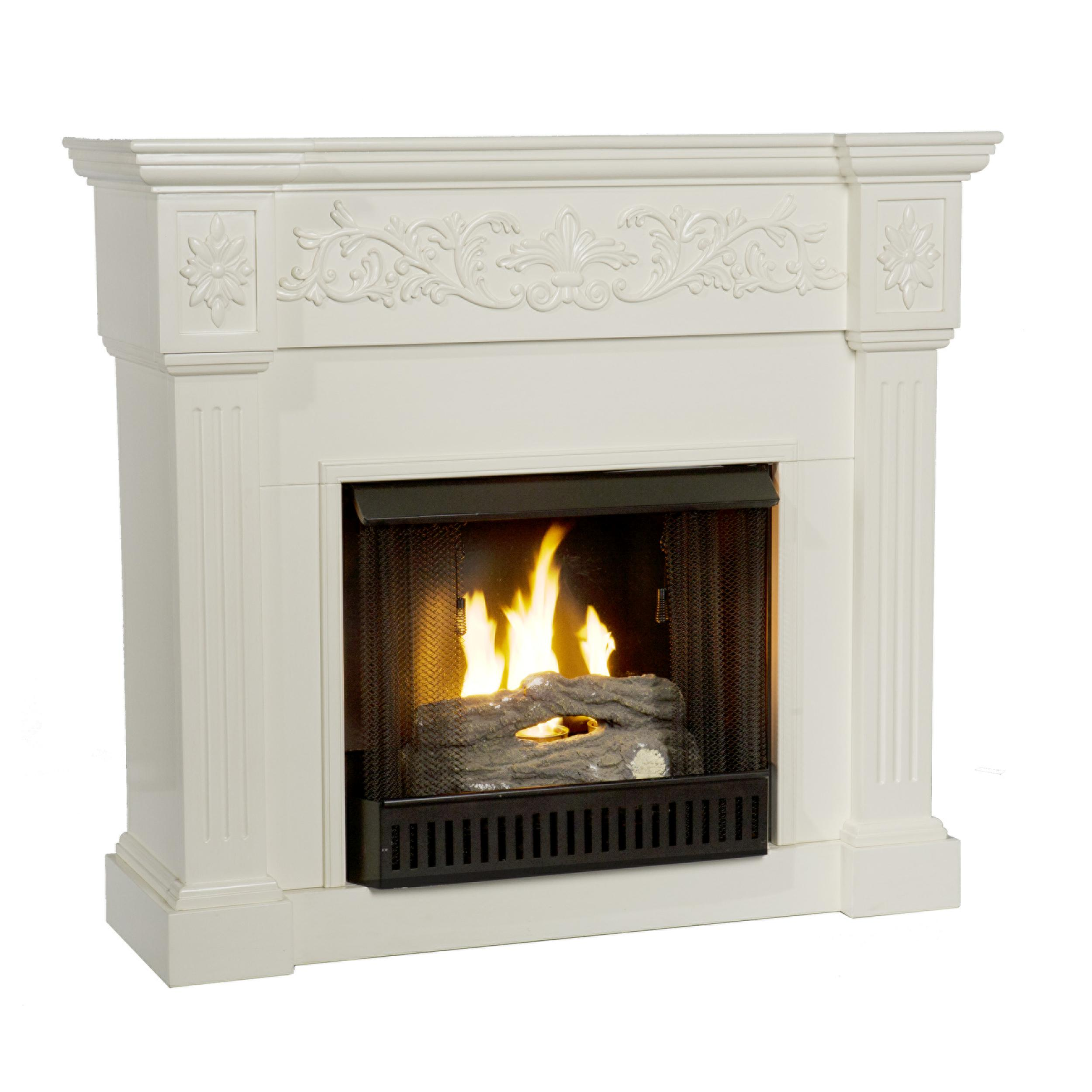 fireplace lowes fuel shop heating pl in com at cooling fireplaces gel stoves flame real