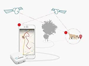 Tractive, GPS Tracker, GPS Tracker for pets, cats, dogs, net coverage, monthly service