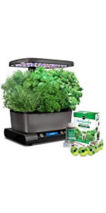 Amazon.com : AeroGarden Harvest Touch with Gourmet Herb ...