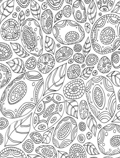 Just Add Color Botanicals 30 Original Illustrations To Color
