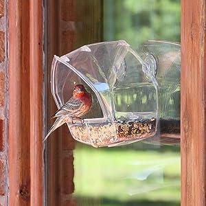 Birdscapes Clear Window Wild Bird Feeder