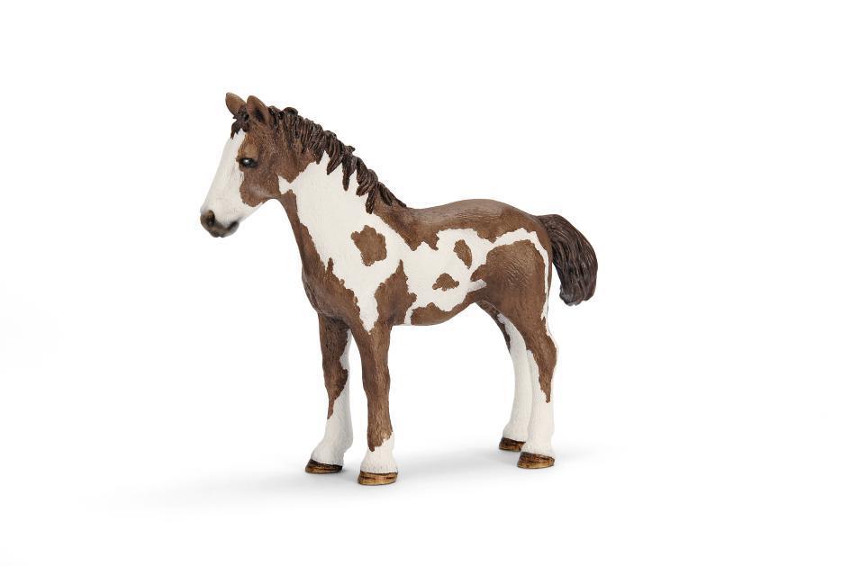Amazon Com Schleich Pinto Yearling Toy Figure Schleich