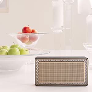 T7 wireless, T7, bluetooth, speaker, bowers and wilkins, sonos, best speaker, best sound, b&w