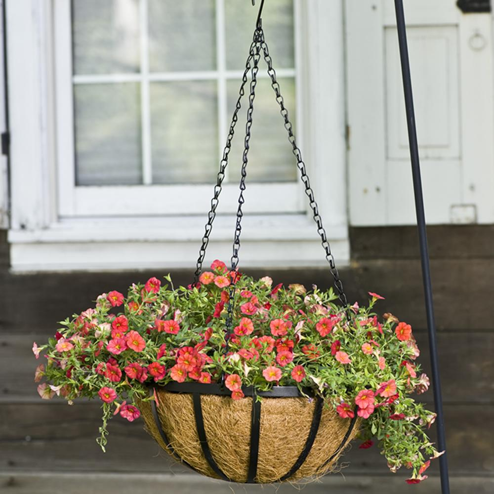 Basket Liners For Planters List Of Cone Hanging Basket