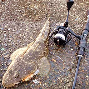 kastking, fishing line, braided fishing line, braid line, braid fishing line