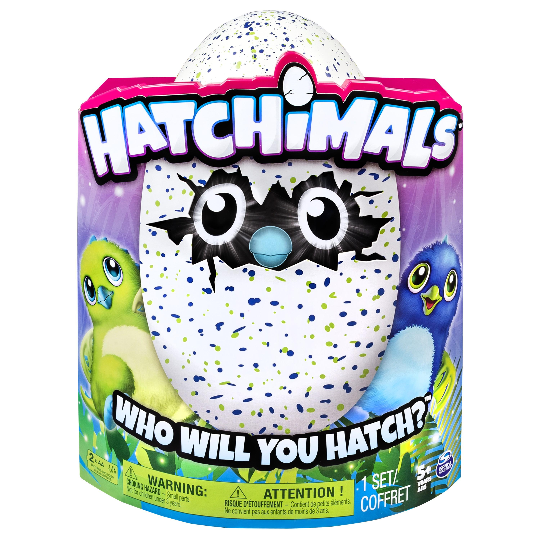 Amazon.com: Hatchimals Draggle - Blue/Green Egg: Toys & Games